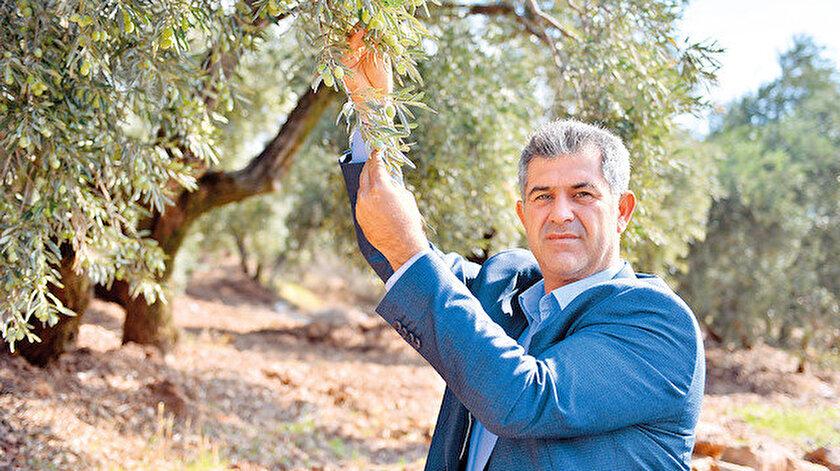 Afrin zeytini dünyaya açılıyor