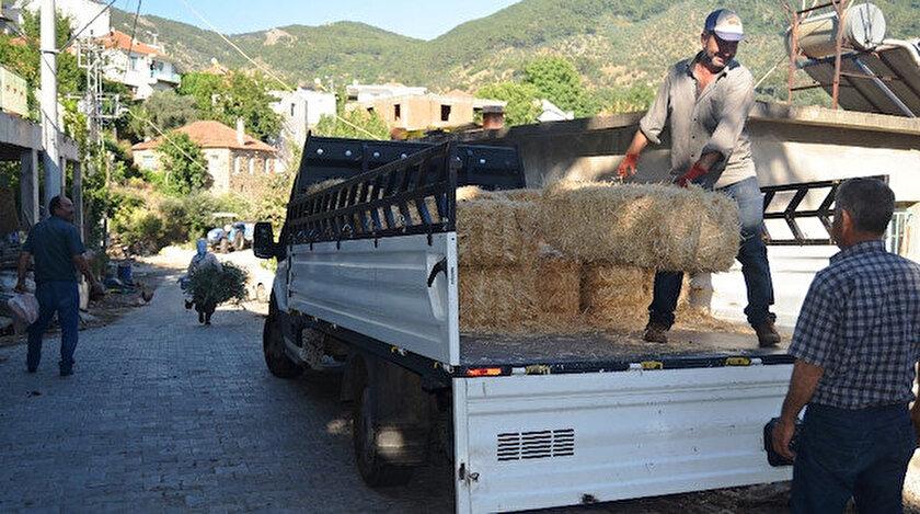 Saman fiyatları Egeli çiftçileri zor duruma düşürdü.
