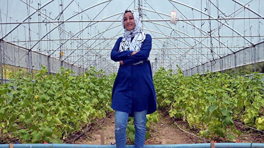 Aldığı hibeyle köyünde 500 metrekarelik sera kuran Sultan Aydın, domates, salatalık ve fasulye yetiştiriyor.