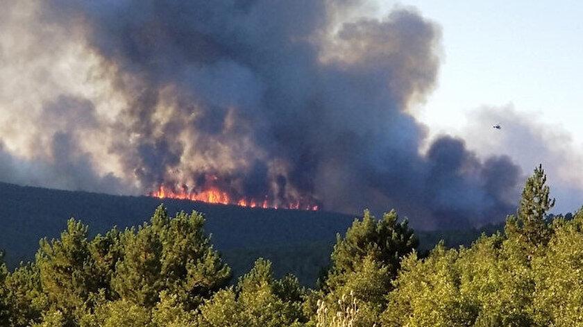 Kütahya'daki yangın saatler sonra kontrol altına alındı.
