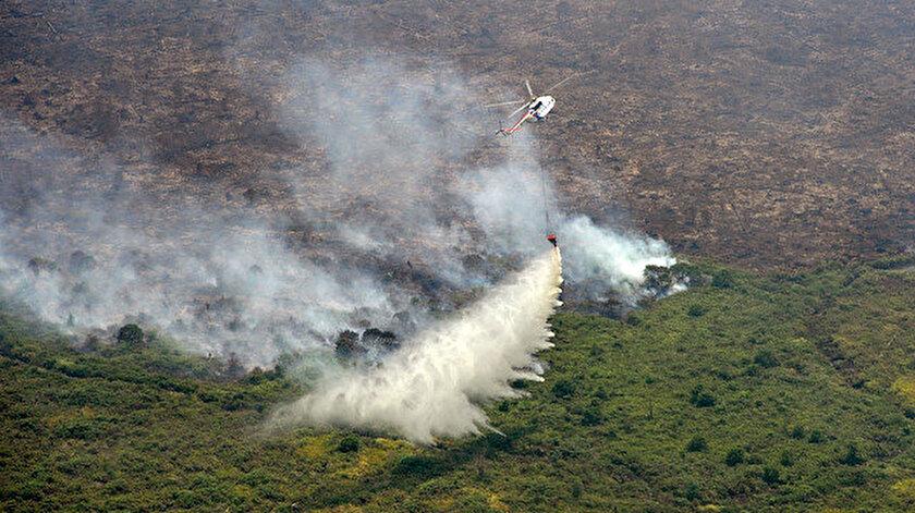Yangınlara çiftçilerin devletin izni olmadan arazi açmak amacıyla yaktığı ateşler neden oluyor.