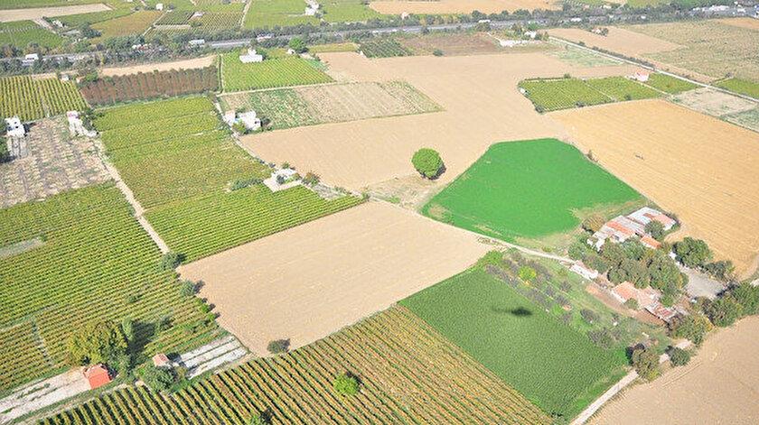 Tohum desteği ekili alanları artırdı.