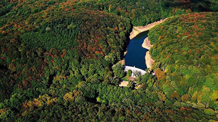 Tarım Bakanlığı, Kemerburgaz Kent Ormanı ile ilgili açıklama yaptı.