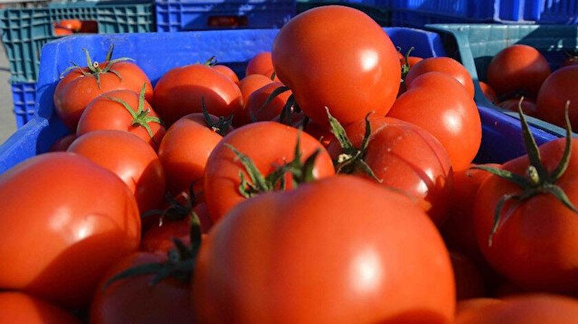 Kasım ayında domatesin fiyatı yüzde 16,07 arttı.