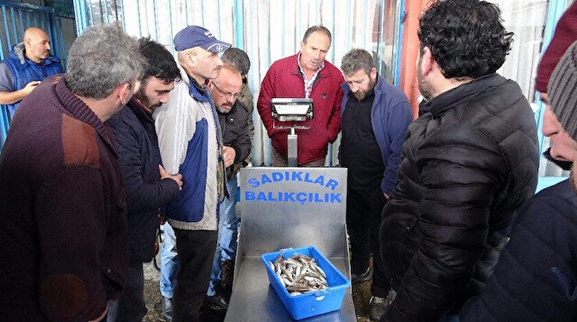 Trabzon balık halinde tezgahlarda az miktarda yerini alan hamsinin kilosu 15-20 TL'den satılıyor.