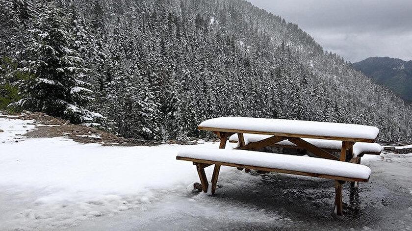 Doğanın kar ile bembeyaz olması, güzel görüntüler oluşturdu.