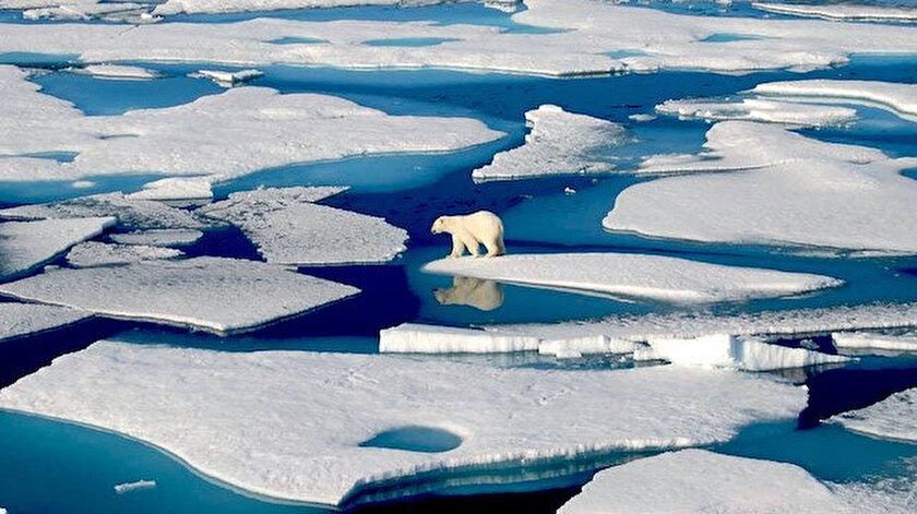 Havalar ısındıkça buzullar eriyor.