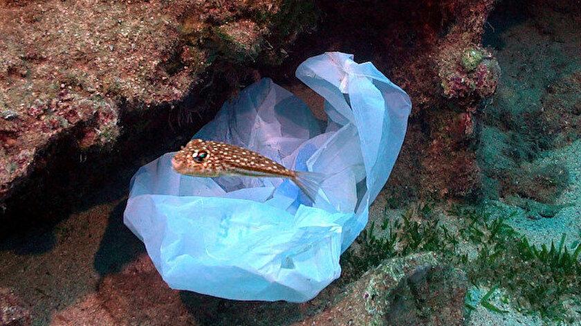 Denize atılan çok sayıda maske, alkol şişesi, poşet ve plastik atığı fotoğraflandı.