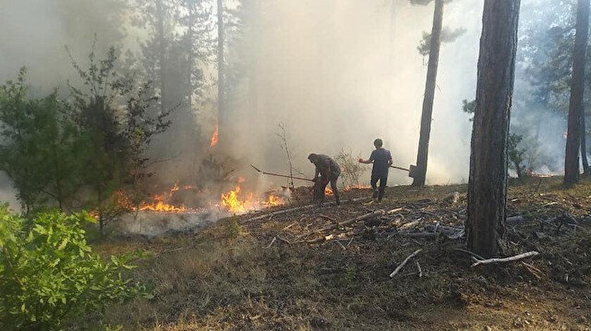 Kastamonu haberleri: Kastamonu'da çıkan orman yangını büyümeden söndürüldü: Soğutma çalışmaları başlatıldı