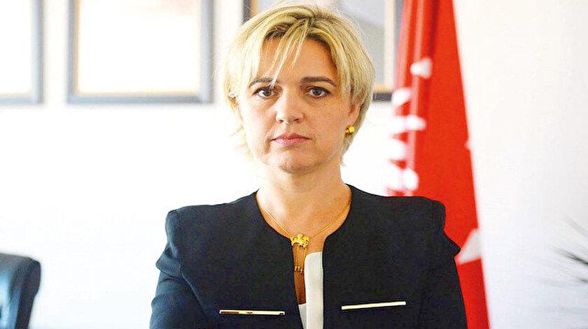 CHP'li Selik Sayek Böke