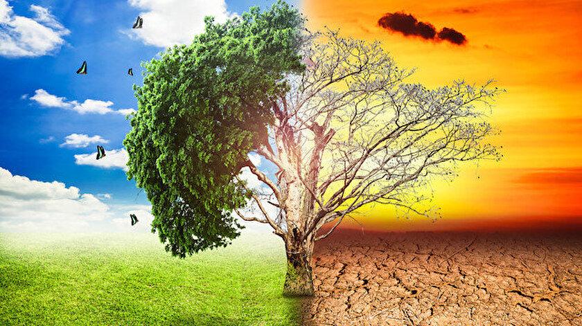 Fotoğraf: Arşiv / İklim değişikliğini en iyi açıklayan görsel.