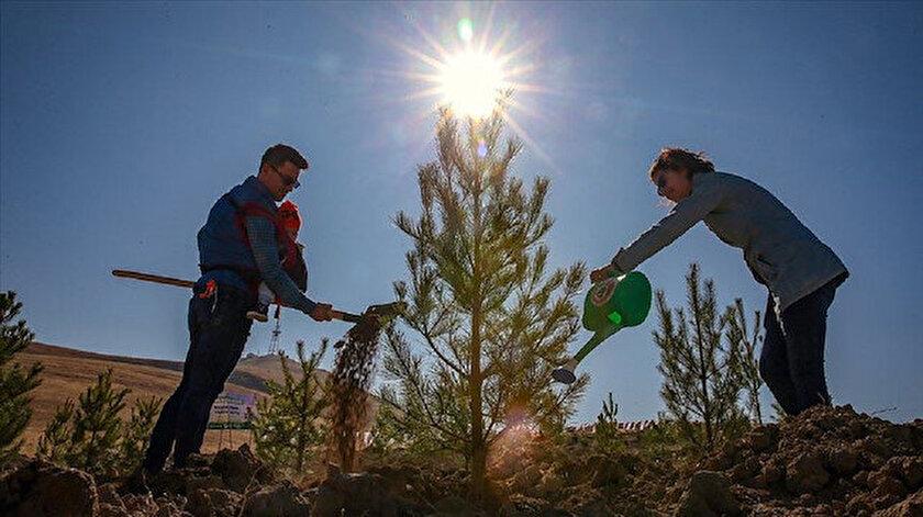 Türkiye ağaçlandırma çalışmalarıyla dünyaya örnek ülkeler arasında başı çekiyor.