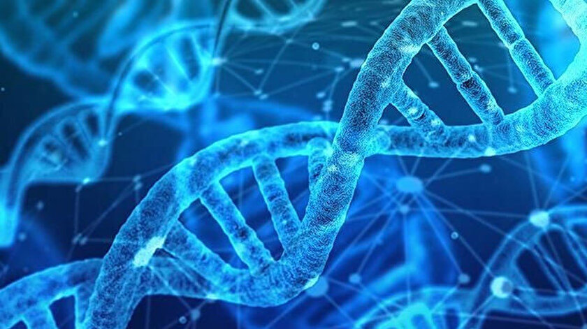 DNA barkodu, alkole uygulanarak sıvıya kimlik tanımlanıyor.