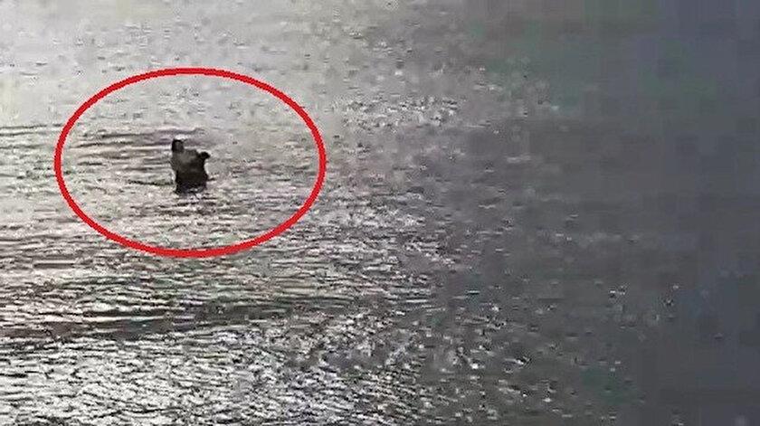 Boğulma tehlikesi geçiren köpeği denize girip kurtardı