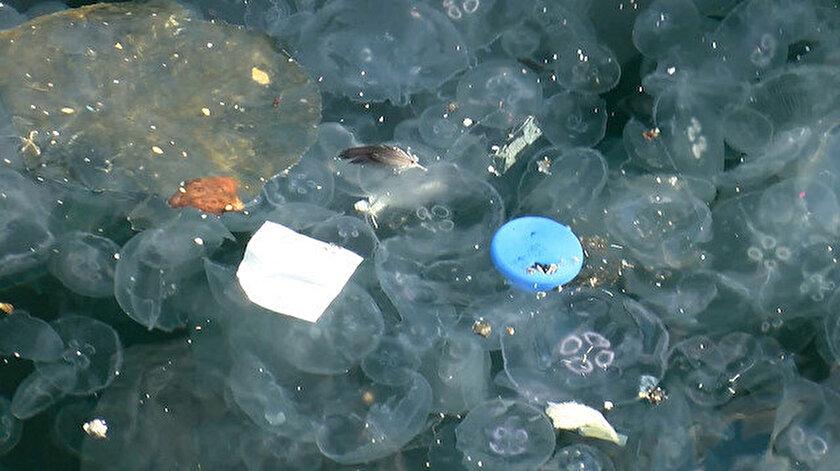 Boğaz'da esen lodos ve poyraza bağlı olarak denizanalarında artış olduğu belirtildi.