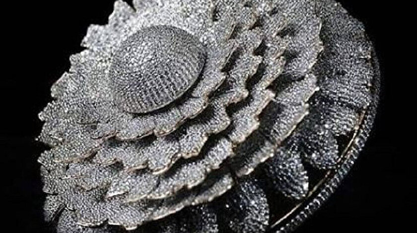 Hint tasarımcının üzerinde 12 bin 638 elmas olan yüzüğü dünya rekorlar kitabına girdi
