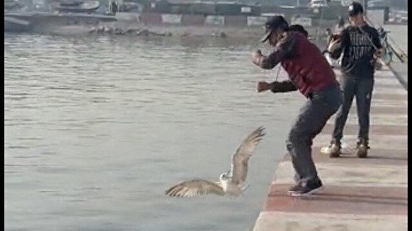 Ne yapacağını şaşırdı: Oltasına balık yerine martı takıldı