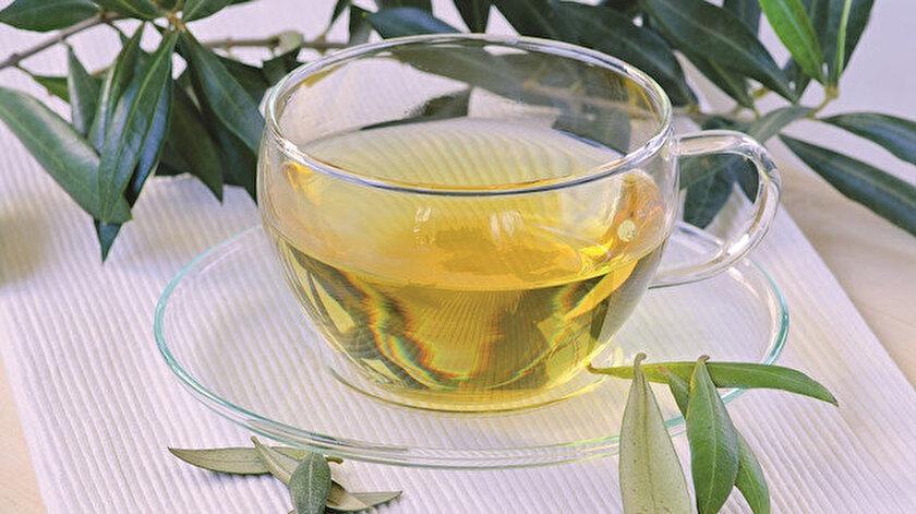 Kovid-19'a karşı alternatif arayışlar sürerken zeytin yaprağı çayının virüsü parçaladığı belirlendi.