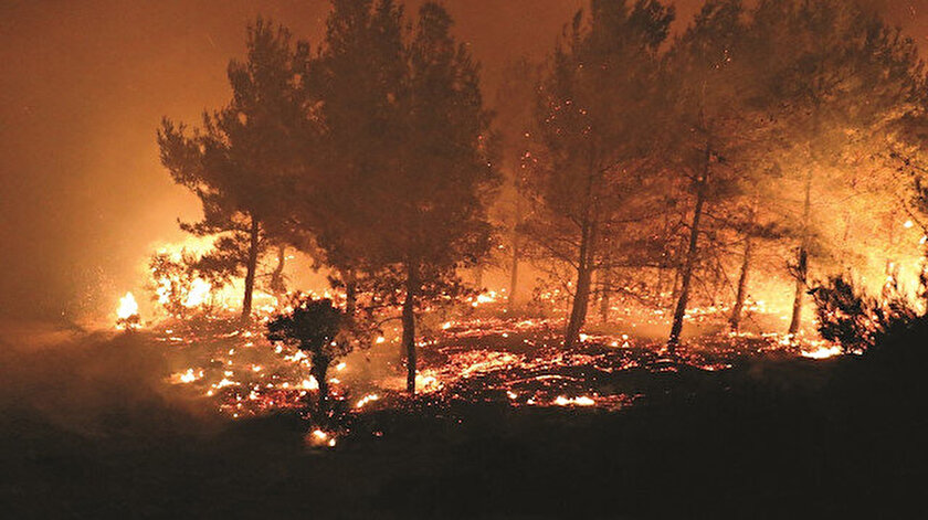 Orman yakma talimatı veren terörist etkisiz hale getirildi.
