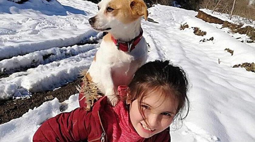 Küçük Cemre insanlık dersi: Hastalanan köpeğini sırtında veterinere götürdü