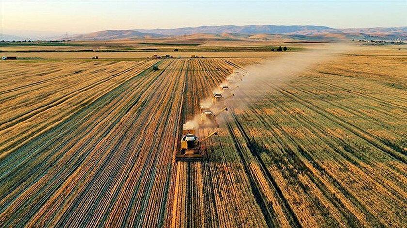 Çiftçinin tarımsal kredi borcuna yapılandırma imkanı
