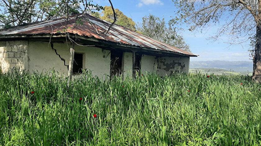 Tek katlı köy evinden Aile ve Sosyal Hizmetler Bakanlığına: Derya Yanıkın ataması memleketinde sevinçle karşılandı