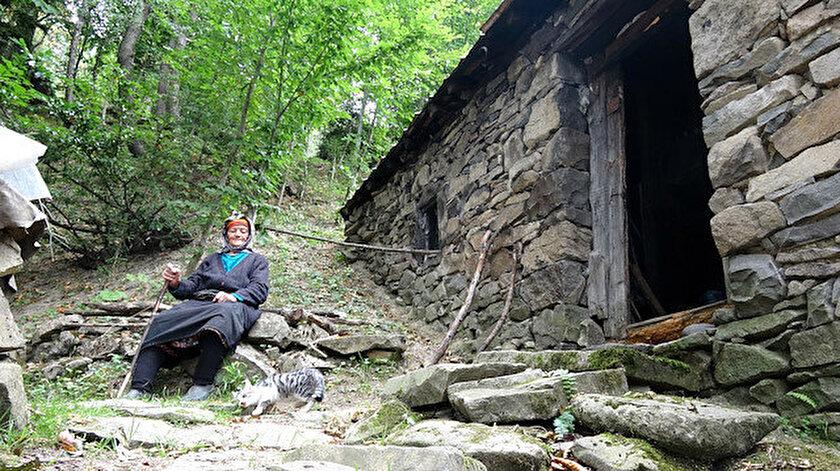 Yaylada tek başına yaşayan Robinson Nine belgeseline İtalyadan ödül - Trabzon haber