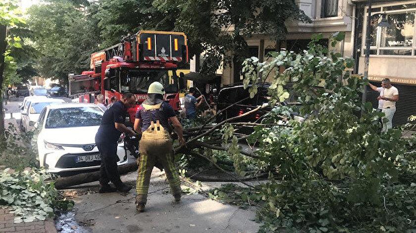 Ünlü oyuncunun otomobilinin üstüne ağaç devrildi - Yeni Şafak