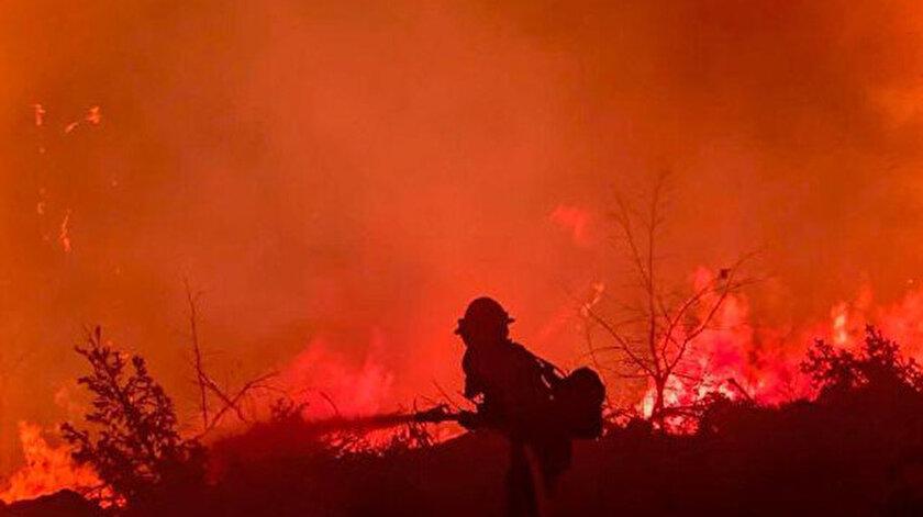 Kaliforniya'da orman yangını evleri küle çevirdi