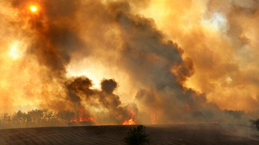 Savcılık soruşturma başlattı: Manavgattaki orman yangını çok yönlü araştırılıyor
