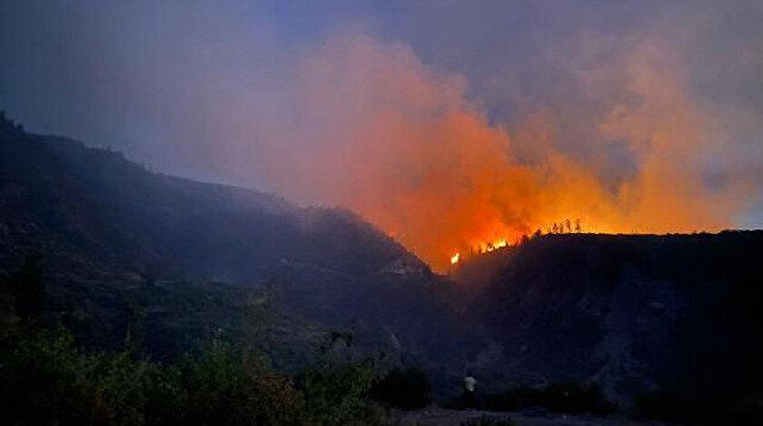 Osmaniyedeki orman yangınına ilişkin 5 kişi gözaltında - Son dakika haberleri