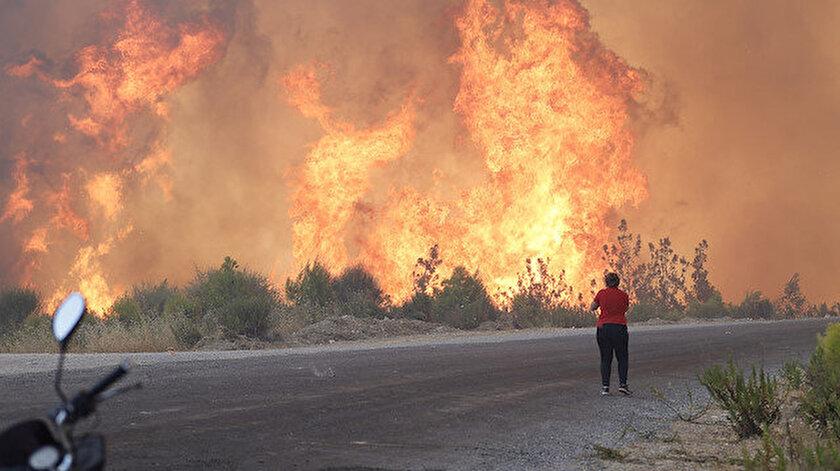 Children of Fire, Mitglied der PKK, forderte die Waldbrände