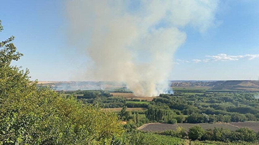 Son dakika: Diyarbakır'daki 7 bin yıllık Hevsel Bahçeleri'nde yangın çıktı