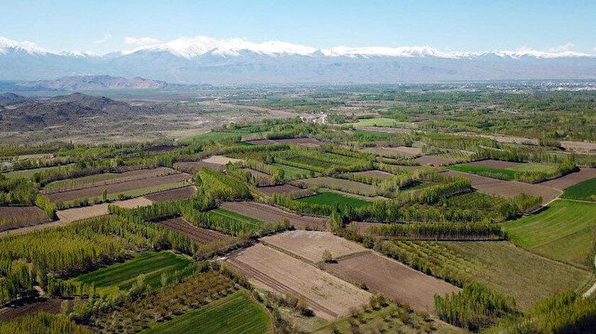 Bingölün Kiğı ve Yayladere bulunan tarım arazileri ihaleyle satılacak