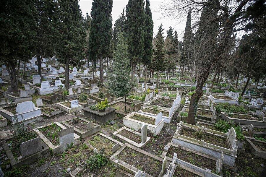 Anadolu Ajansı Adem Demir