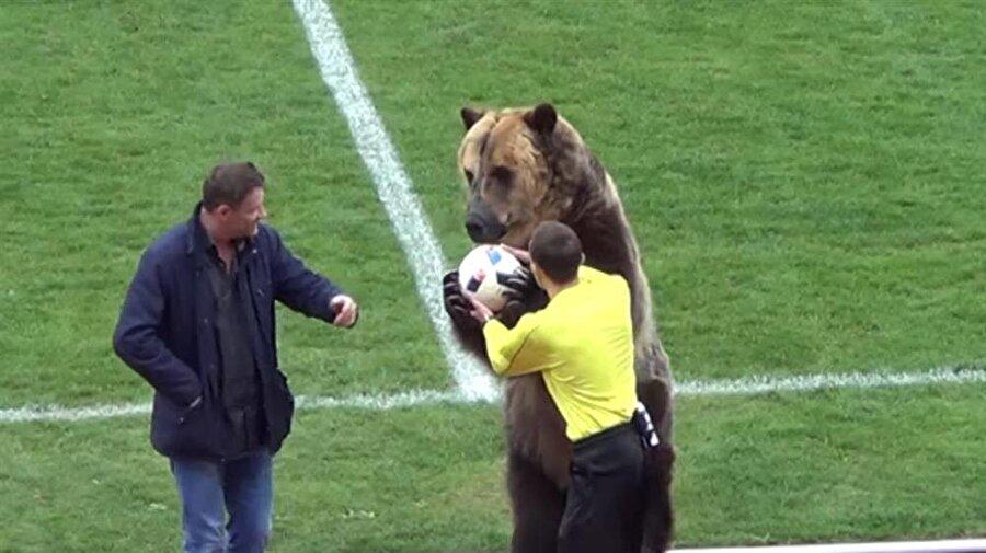 """Dünya Kupası'nda oynanacak bir maç öncesinde de sahaya çıkartılması planlanan """"Tim""""in bu görüntülerine hayvan hakları savunucularından tepki geldi."""