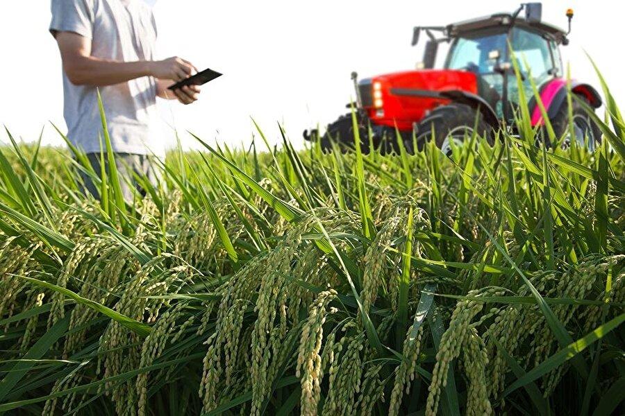 Bayer'in, Monsanto'yu tohum işleme ve kimyasal tarım alanındaki diğer varlıklarını elden çıkarmak kaydıyla satın almasına onay verildi.