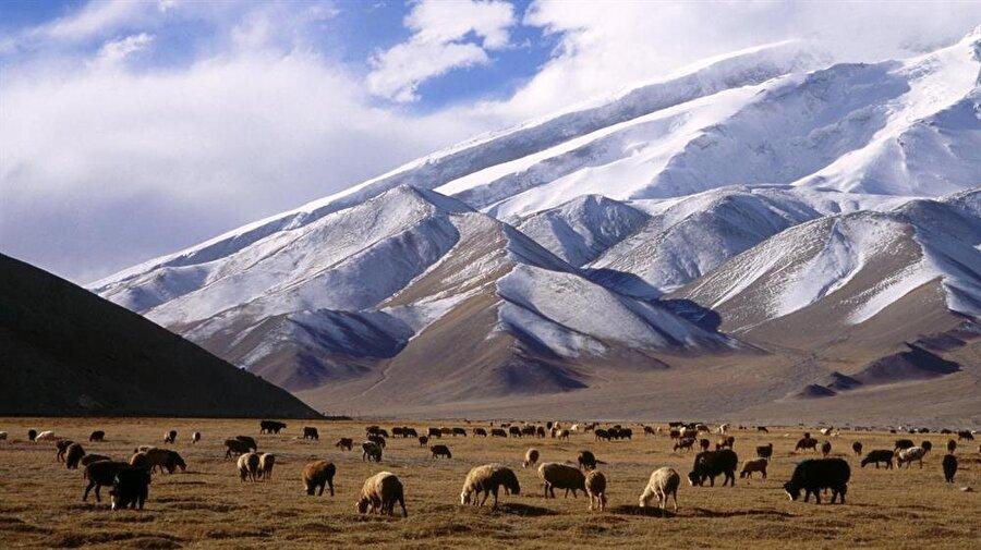 Doğu Türkistan bölgesi tabiatıyla ve konumuyla göz kamaştırıcı.