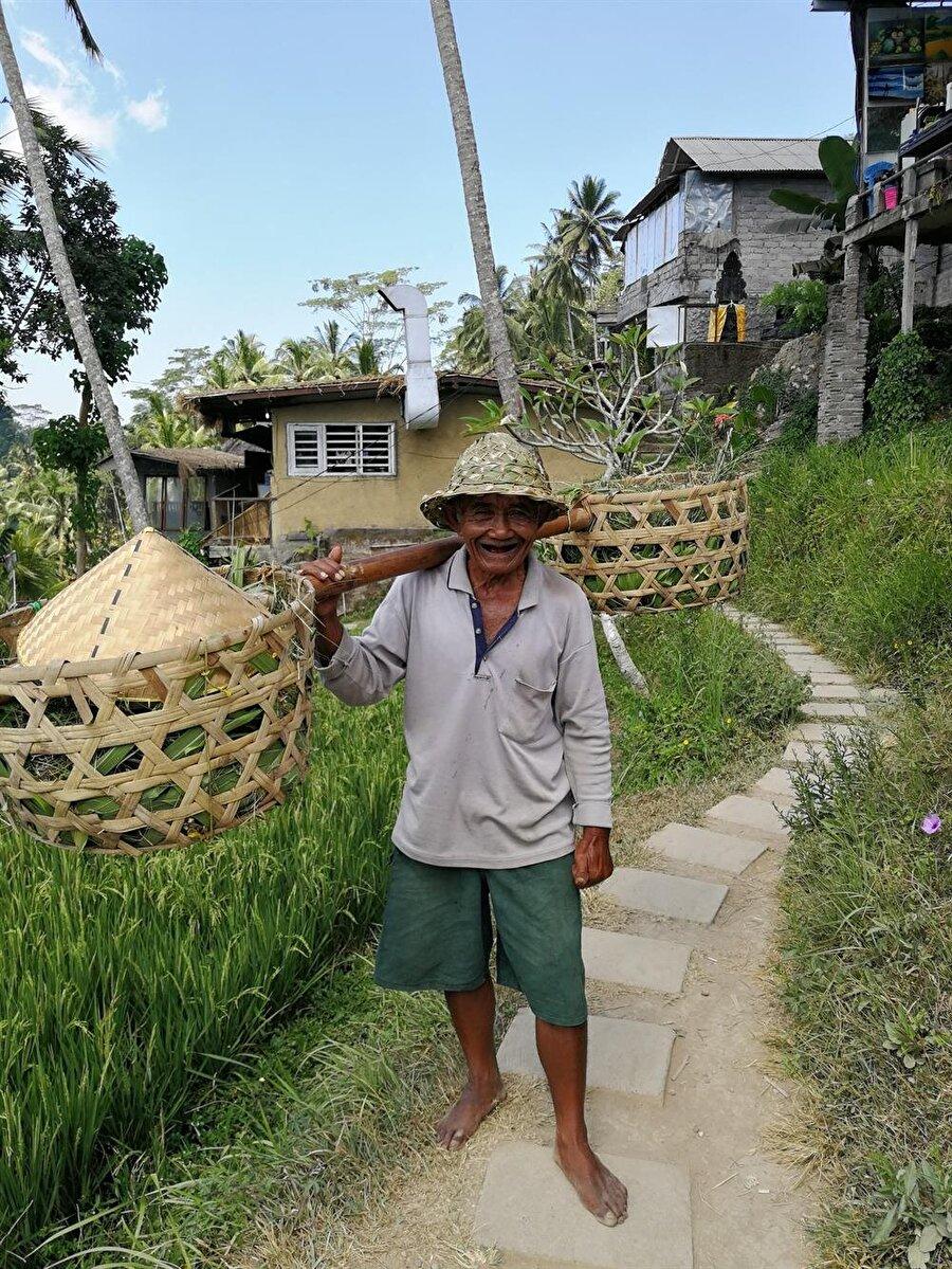 Pirinci yetiştirmek ve toplamak epey zahmetli. (Fotoğraf: Hatice Sarı Tan)