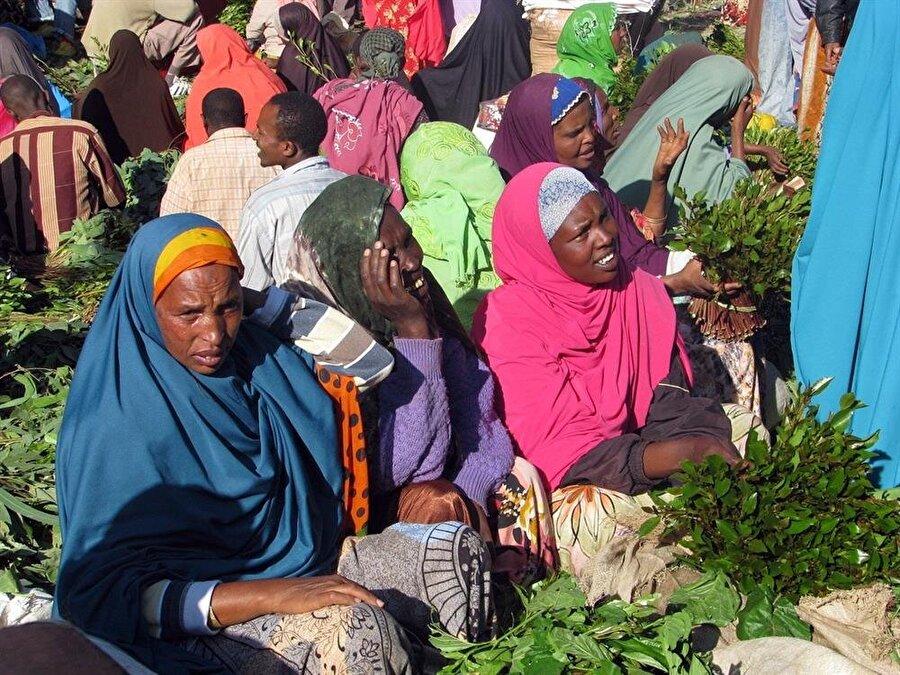 Kat çiğnemek, sadece Yemen'de değil, Etiyopya ve çevresinde de oldukça yaygın.