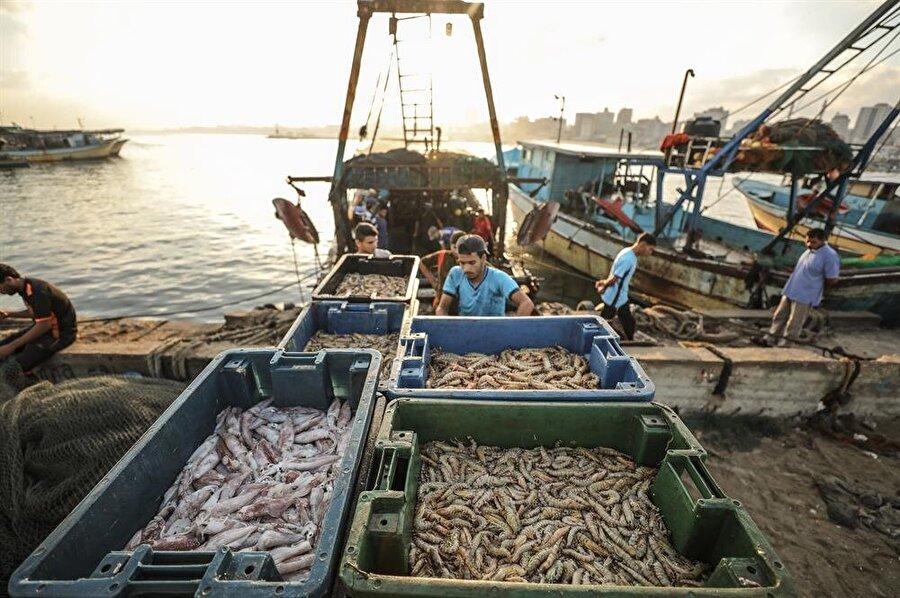 Gazzeli balıkçılar, İsrail'in keyfi sınırlamalarından şikayetçi. (Ali Jadallah / AA)