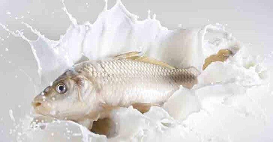 Balık taze olduğu sürece yanında tüketilen ek besinlerin hiçbir zararı olmaz.