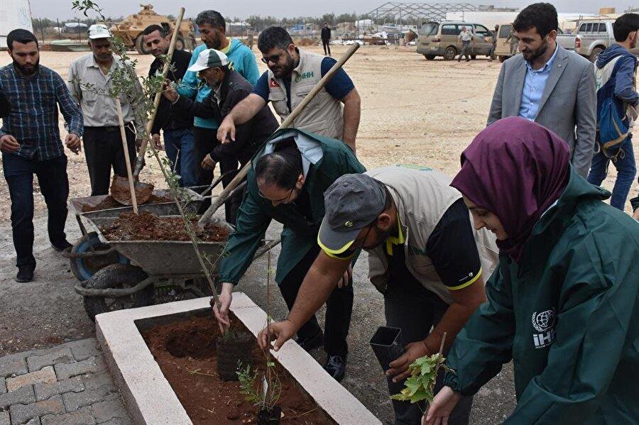 Katılımcılar tarafından yurdun bahçesine zeytin ağaçları dikildi.