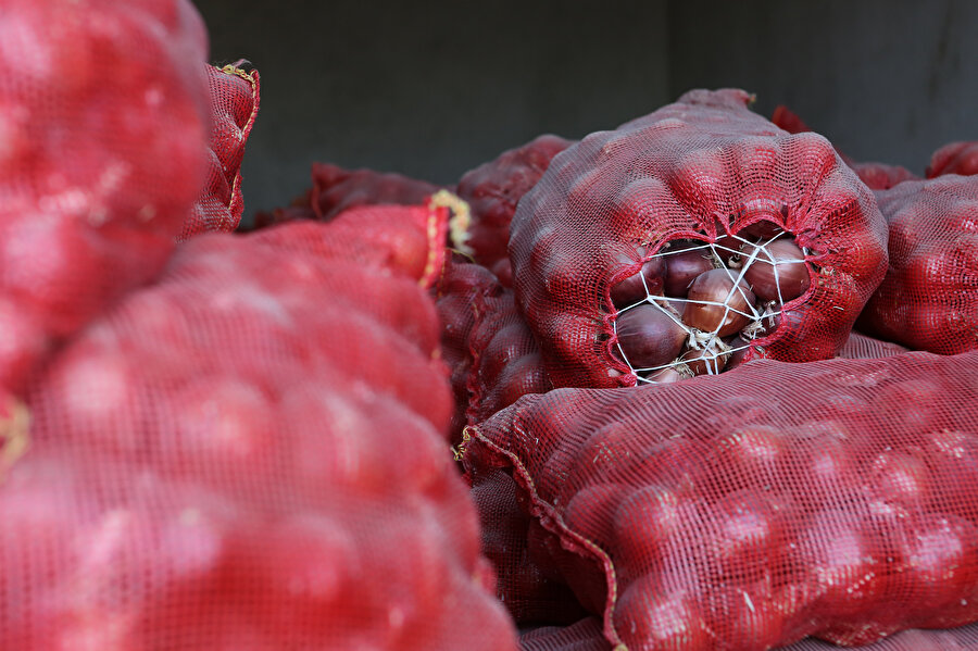 Stokçuların soğan fiyatlarına etki etmesini engellemek için denetimler sıklaştırıldı