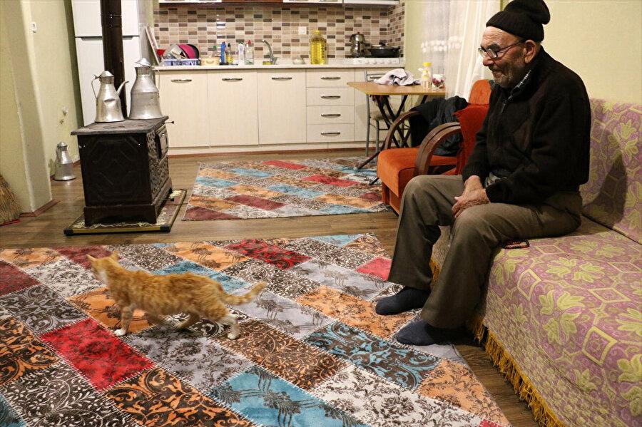Köye geldiğinde kedileri ile zaman geçiriyor.