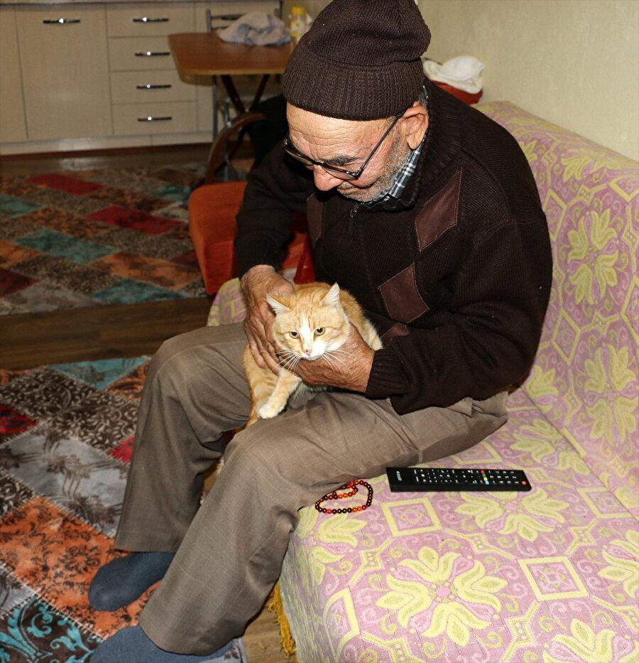 Ali dede, yangından kurtardığı kedileri ile yeni evinde