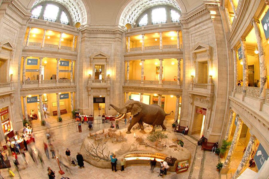 Kapanmanın devam etmesi durumunda Washington'daki Smithsonian müzeleri de hafta ortasından itibaren kapılarını ziyaretçilere kapatacak. Müzeler 2017 yılında 30 milyon ziyaretçi çekmişti.