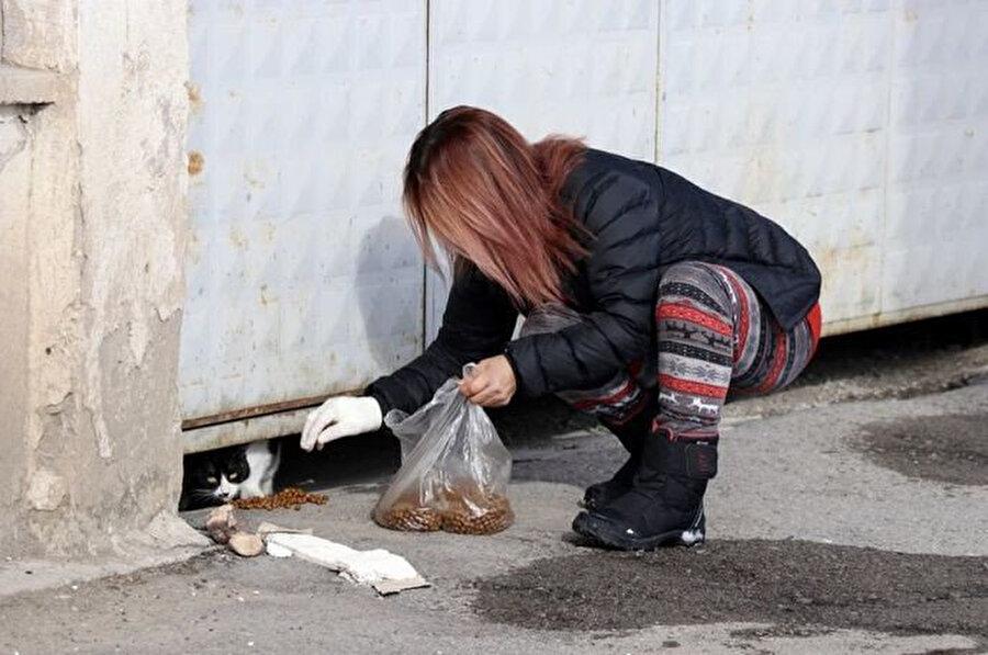 Soğuk kış günlerini atlatmaları için onlara barınaklar da yapan Tezer, 30'ya yakın kedi ve 70 civarında köpeği besliyor.