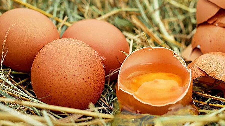 Yumurtalardan 'kanser ilacı' çıkacak.