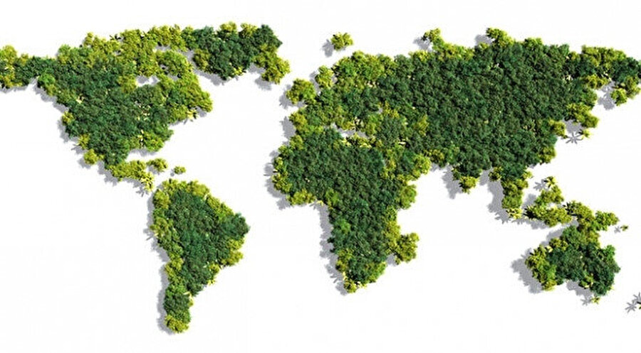 Yeşil alanlarda yüzde 5 artış görüldü.